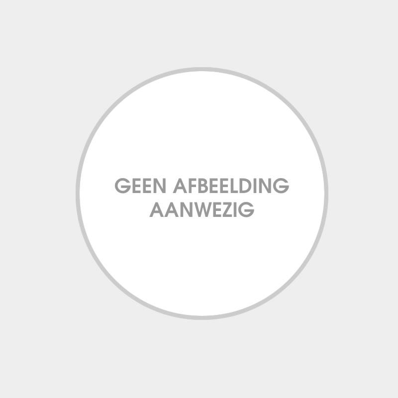 Renault Megane RS 2017 Oranje